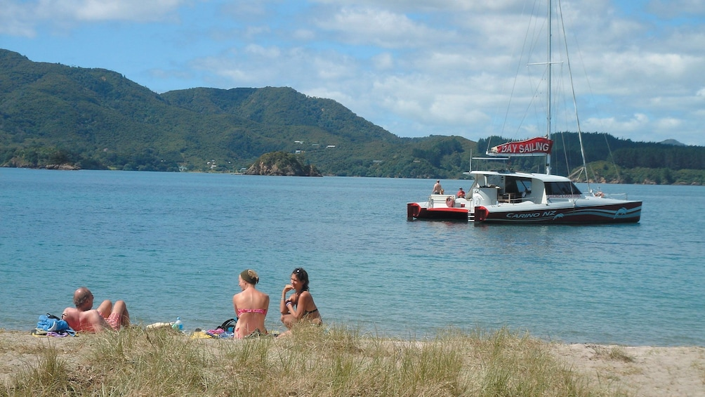 Show item 9 of 9. boat sailing past a shore in the bay of islands