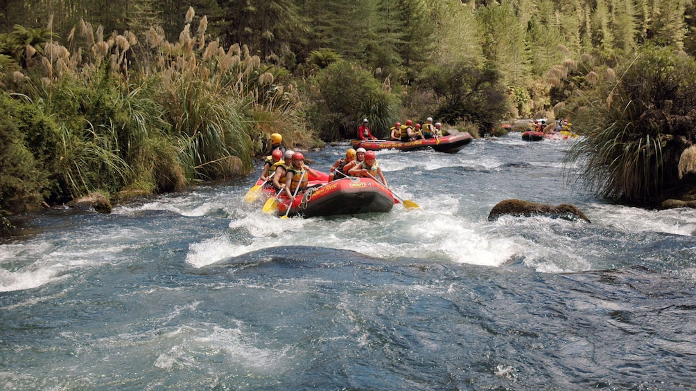 Show item 3 of 5. group of white water rafters in New Zealand