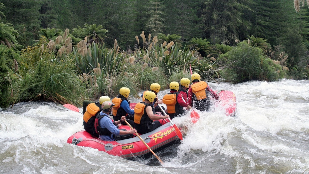 Show item 4 of 5. white water rafters fighting the rapids in New Zealand