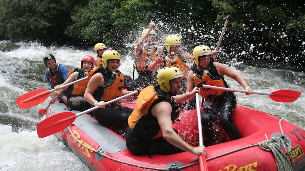 Show item 1 of 5. white water rafters working hard in the rapids in New Zealand