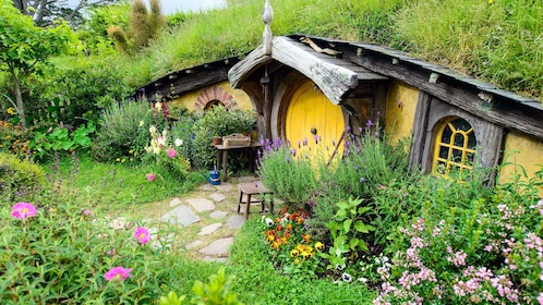 Hobbit house from the movies in New Zealand
