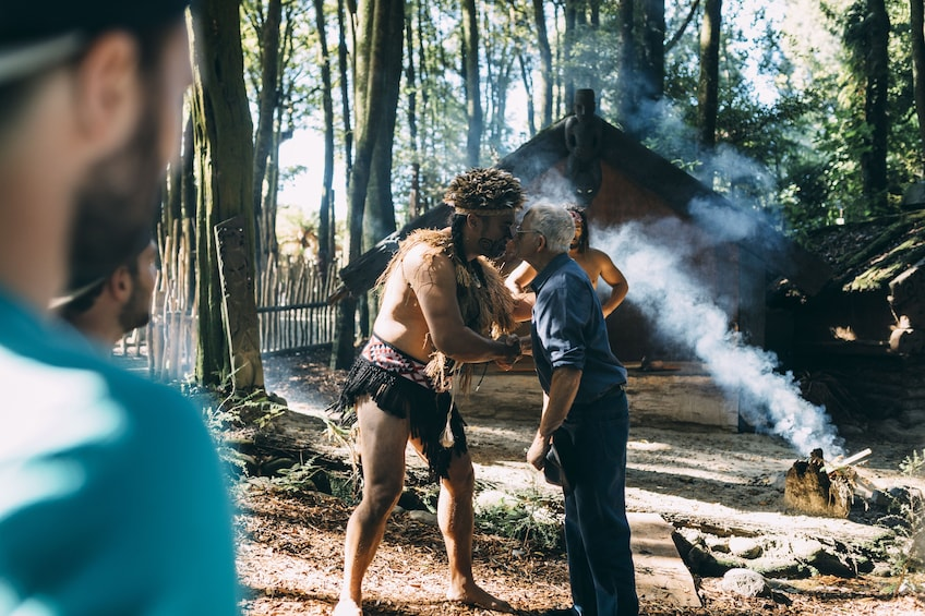 Show item 3 of 9. Tamaki Maori Village Cultural Discovery & Hangi Feast