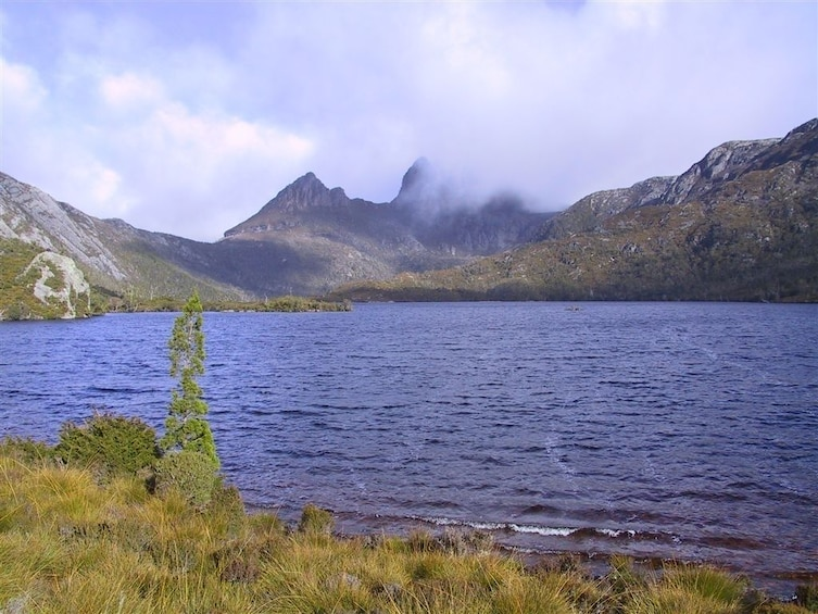Show item 3 of 7. Cradle Mountain National Park Day Tour from Launceston