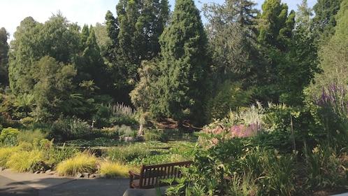 Garden view of Hobart