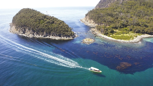Aerial view of a boat cruising through the waters of Bruny Island