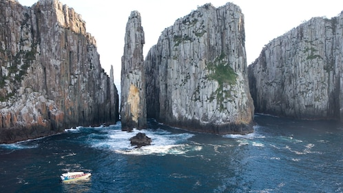 Scenic cruise of the Tasman Peninsula