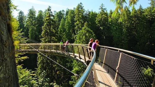 Capilano Suspension Bridge Park Tickets