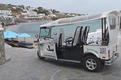 e-TUK Mykonos Seaside & Local Brewery Tour