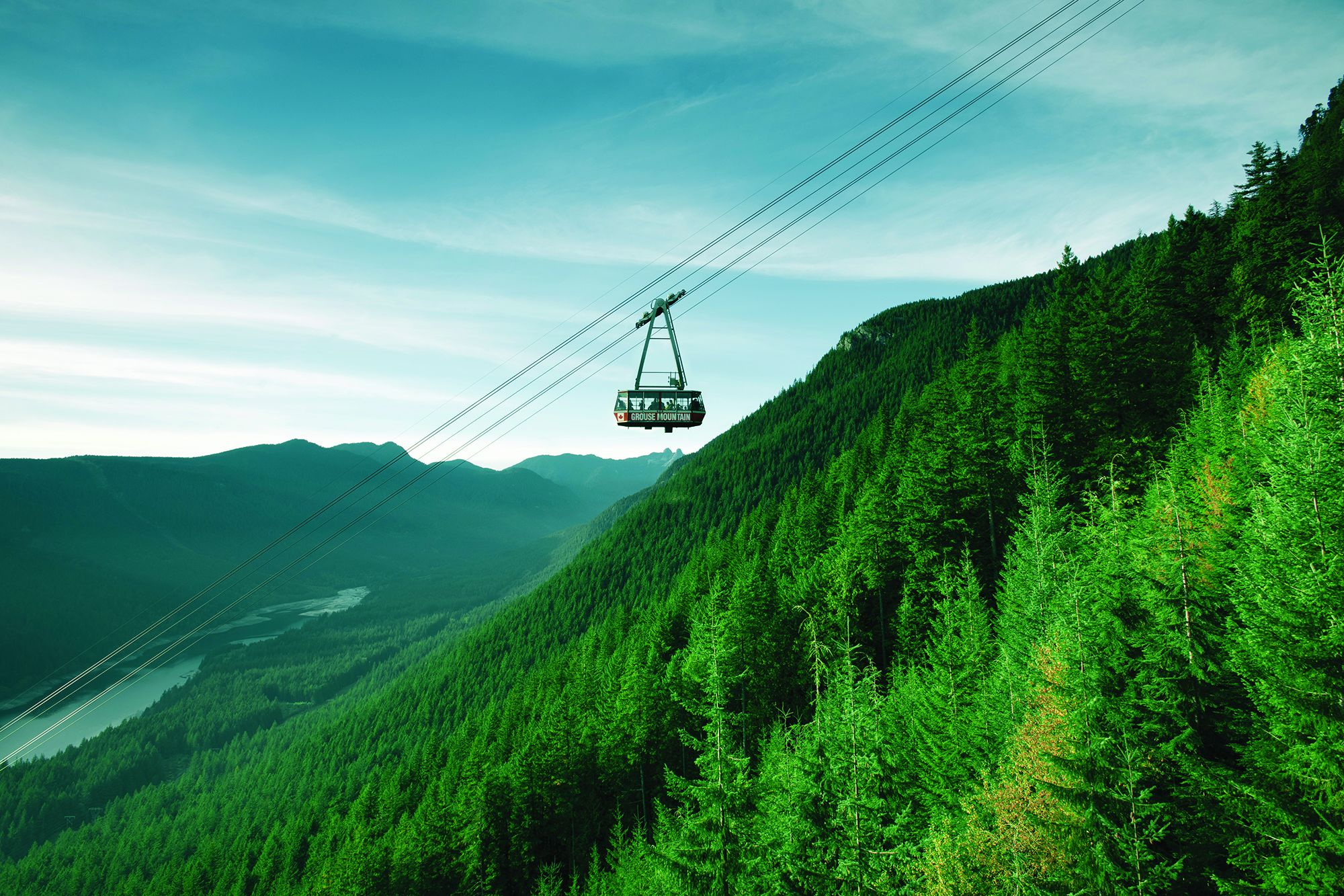 Grouse Mountain Experience Tickets