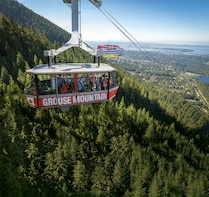 Grouse Mountain Admission Tickets