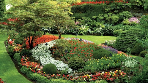 Beautifully manicured garden in Vancouver