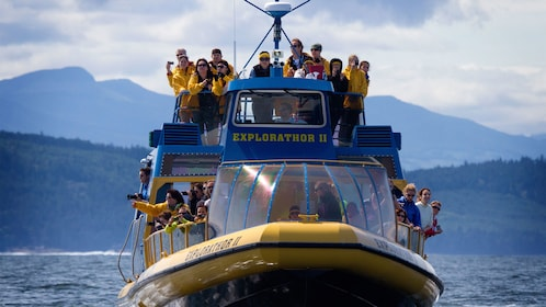 Aboard the whale watching boat in Vancouver