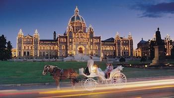 Royal Horse-Drawn Carriage Tour