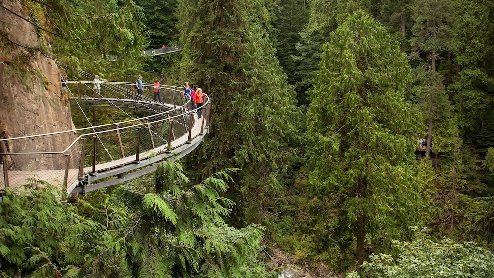 Suspension bridge around rocky cliffs in Vancouver