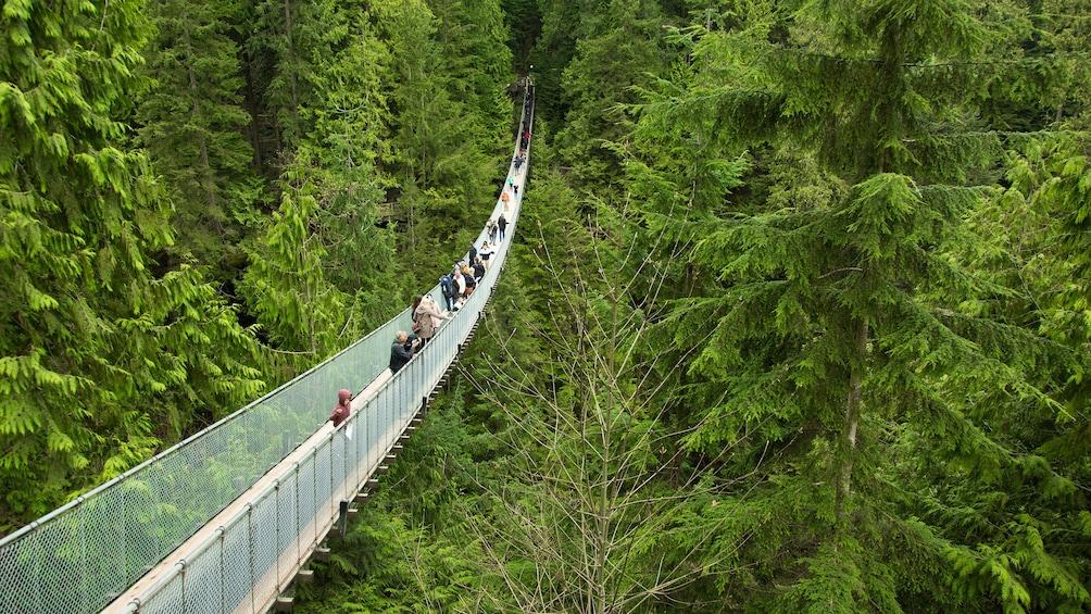 Capilano Suspension Bridge Park & Vancouver City Tour