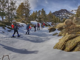 Snowshoeing & Snow Shelter Building Fun