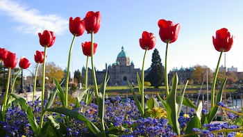 Victoria City Tour & Tickets to Butchart Gardens