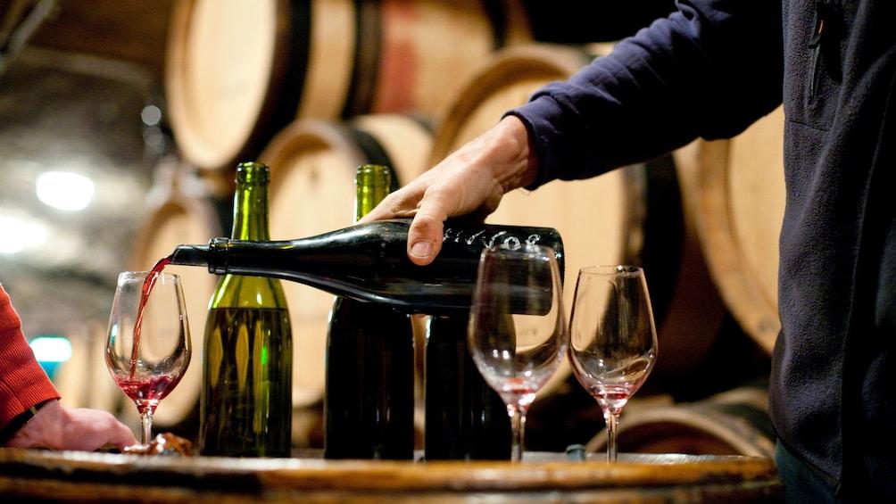 Charger l'élément 9 sur 9. A Person pouring wine for a tasting at a vineyard in Saint Emilion