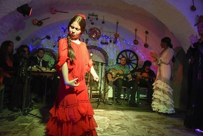 show_flamenco_1002.jpg