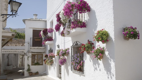 home decorated with flowers in granada