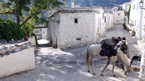 small town in granada