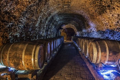 Vitoria & Rioja Wine Area Full-Day Tour