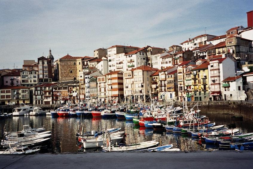 Basque Coast Half-Day Tour