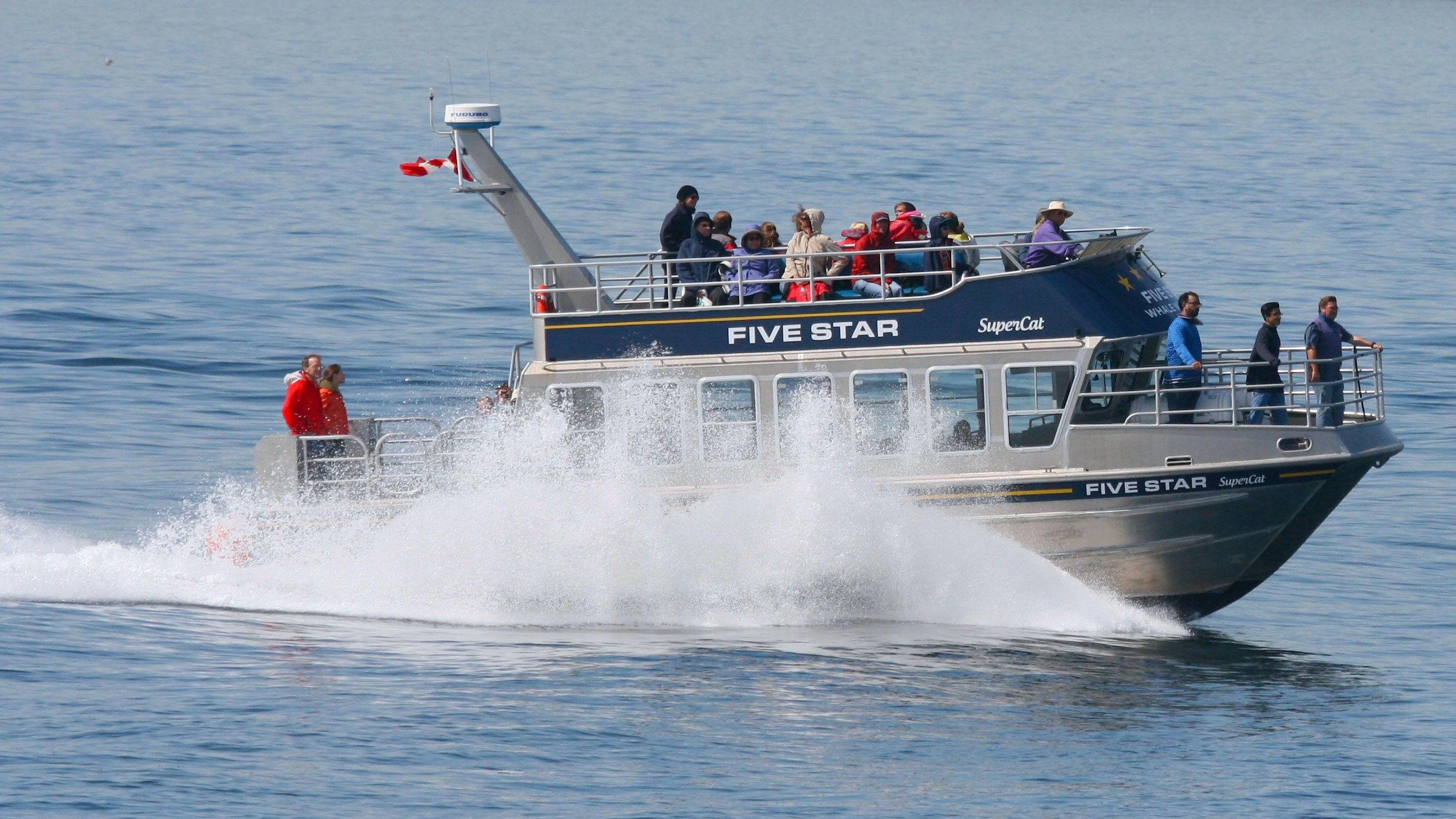Whale watching boat cruising through the water in Victoria