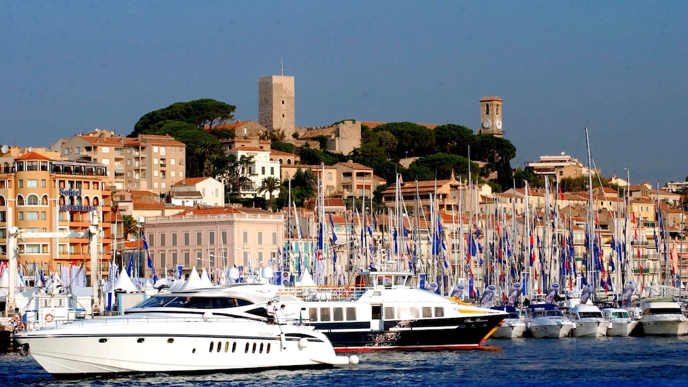 Show item 5 of 5. Sailboats on the water in Cannes