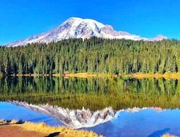 Mount Rainier National Park 1-Day Tour(Seattle Departure)SR1