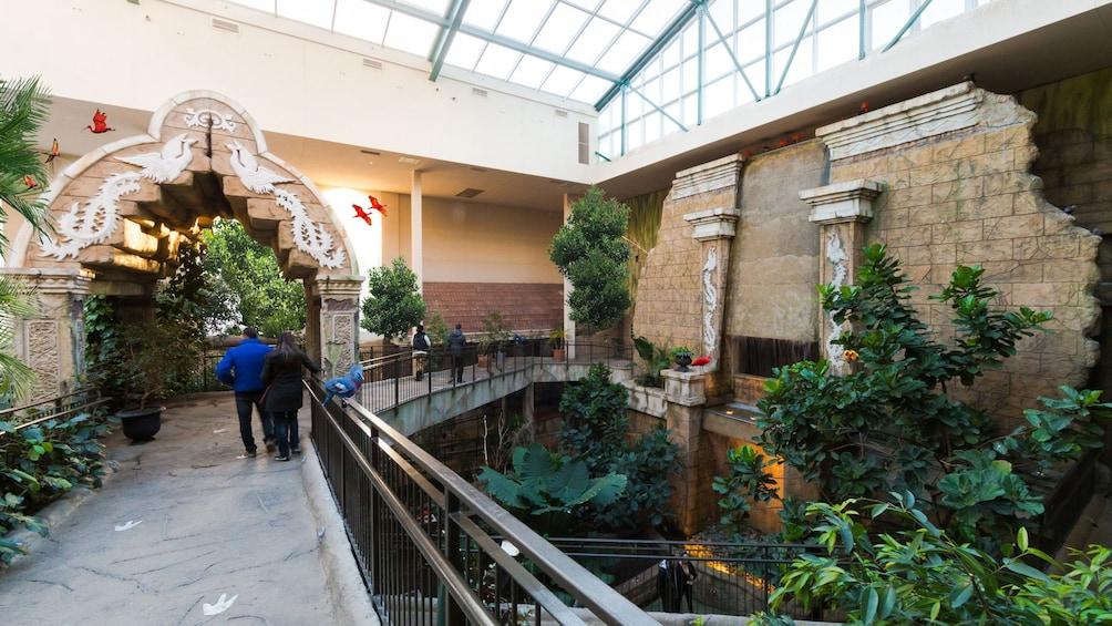 Show item 1 of 7. Bird Kingdom Niagara Falls