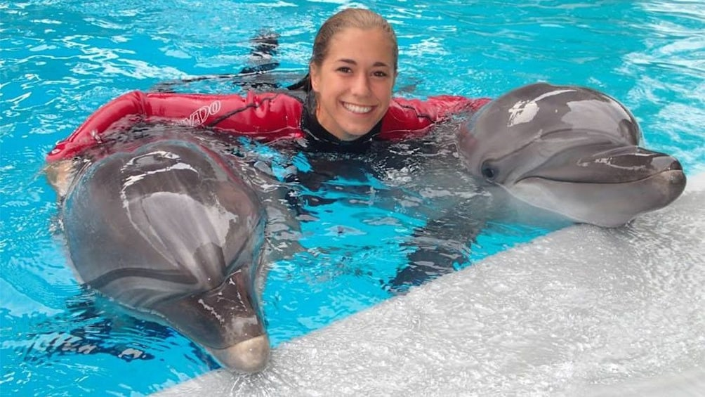 Show item 2 of 3. Dolphins with trainer at the Marineland of Canada