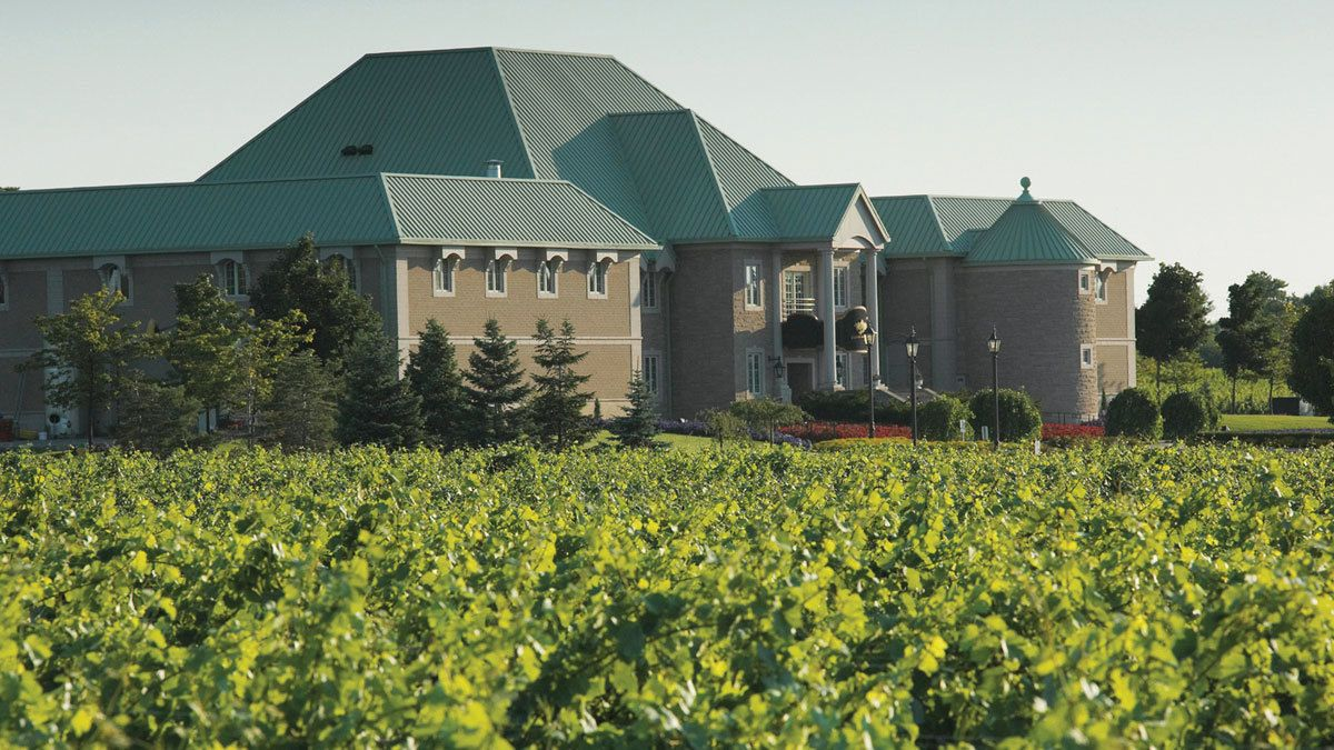 Visiting a vineyard at Niagara Falls