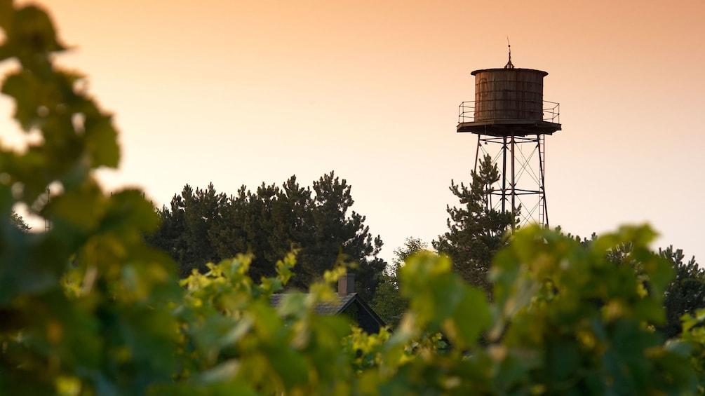 Show item 5 of 5. A water tower in the vineyard at Niagara Falls