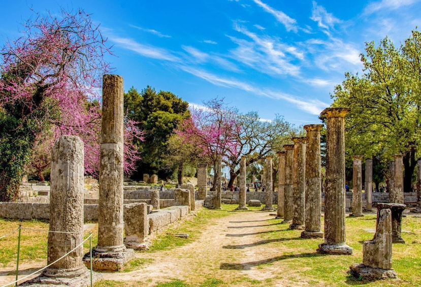 Show item 2 of 6. Private Shore Excursion to Ancient Olympia from Katakolon