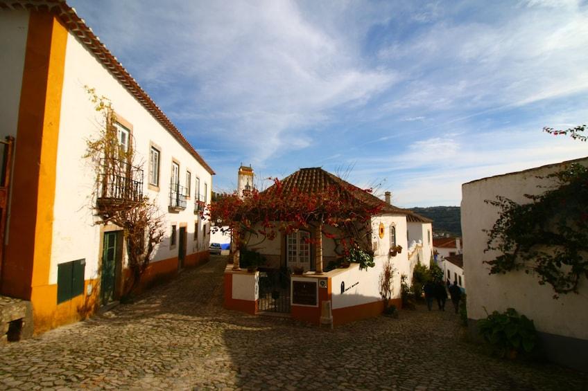 Show item 5 of 8. Nazaré, Óbidos, Peniche, Cape: History & Nature Adventure