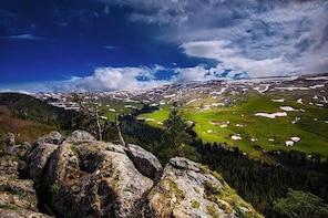Lagonaki plateaue - day trip to mountains, UNESCO World Heritage site