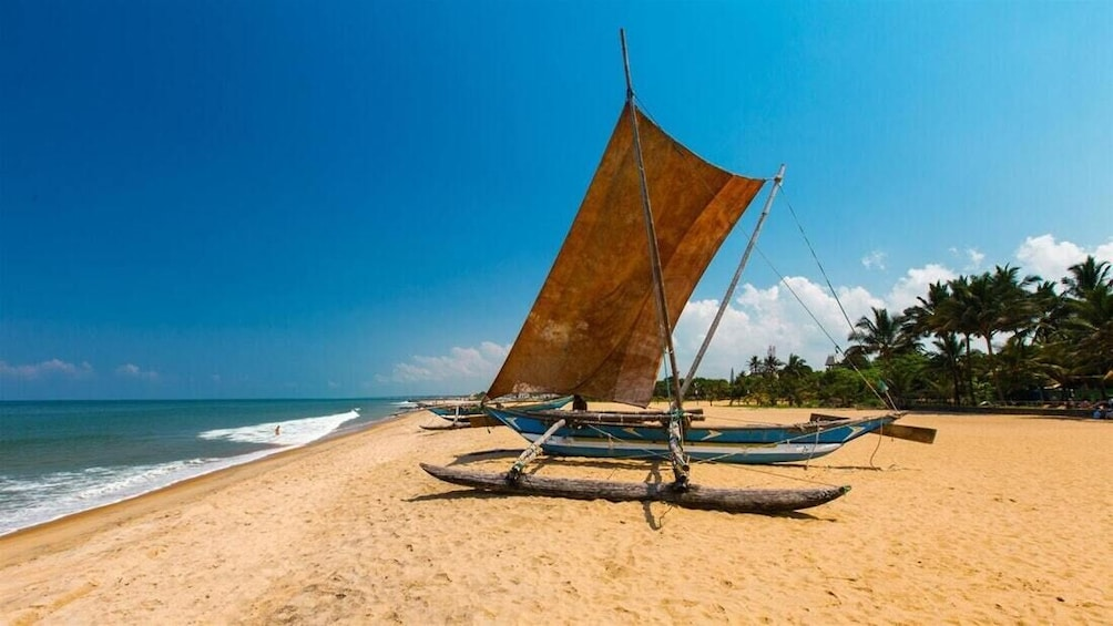 Loves Escape to Sri Lanka