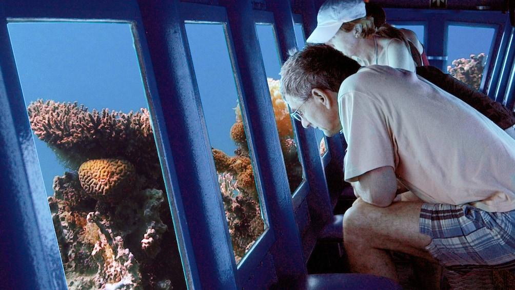 people viewing sealife through windows of submarine in egypt