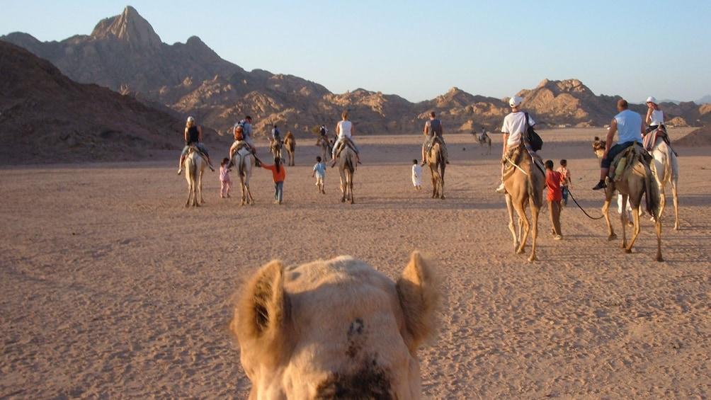 Views on the Desert Safari Trip in Cairo