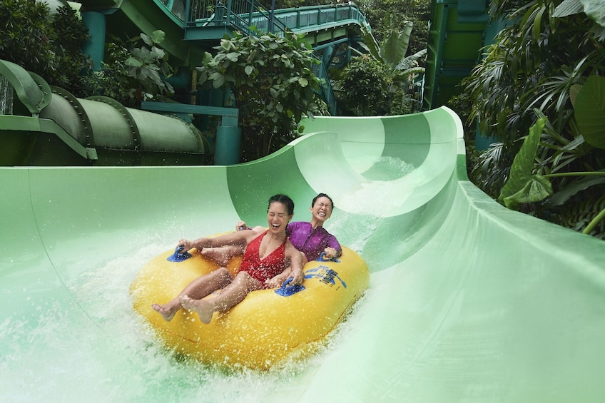Show item 5 of 8. Adventure Cove Waterpark™ One-Day Ticket