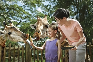Singapore Zoo Ticket with Roundtrip Transfer