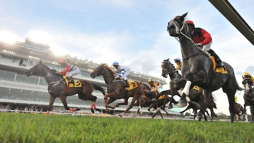 Horse racing at the Turf club in Singapore
