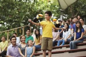 Ingresso al Jurong Bird Park e corsa in trenino