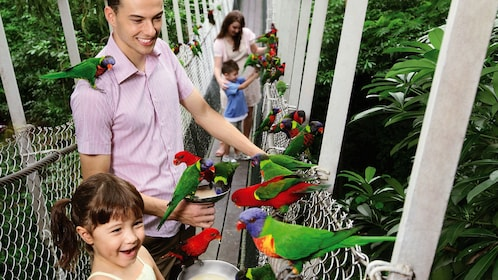 Family with young children feeding tropical birds out of bowl at the Jurong Bird Park in Singapore