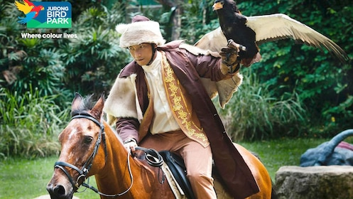 Man dressed in costume horseback riding with bird of prey on his arm at the Jurong bird park in Singapore