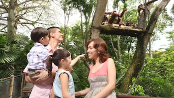 Singapore Zoo Admission & Tram Ride