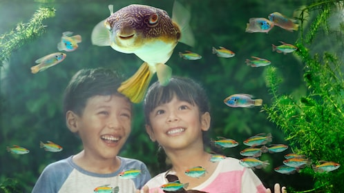 couple of kids looking at a puffer fish at the wildlife reserve in singapore