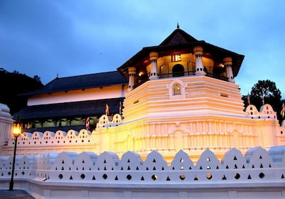 Kandy day tour from Hikkaduwa / Mirissa