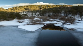 Sila Park: Snowshoes 2 days and 1 night in B&B on Arvo Lake